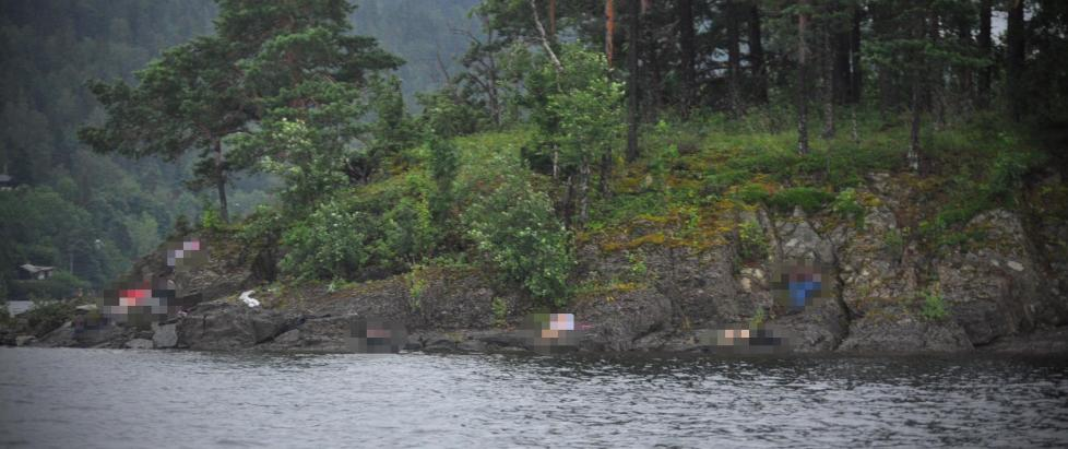 Кто взрывает и убивает норвежских гоев?